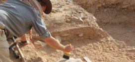 Laziness helped lead to extinction of Homo erectus   Science Daily