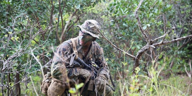 NEW IN 2019: Jungle jammies are coming this summer | Marine Corps Times