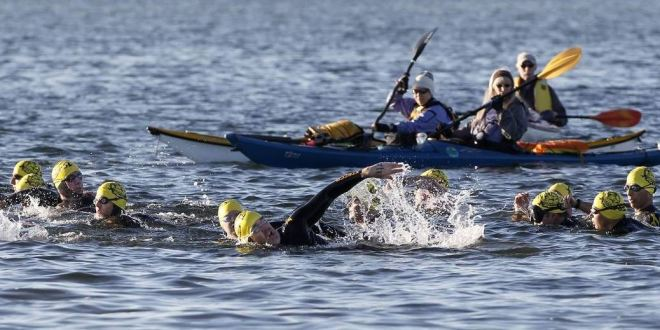 With San Francisco and Boston now on board, Tampa Bay can't contain Frogman Swim any more | Tampa Bay Times