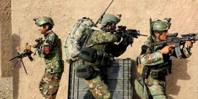 Special Forces kill 20 Taliban militants, detain 3 others in Wardak province | Khaama
