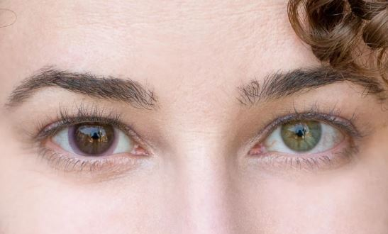 Transitional contact lenses are finally here | CNET