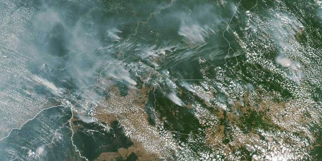 The Amazon Rainforest Is Burning — and Experts Say the Fires Could Accelerate Global Warming  Travel and Leisure