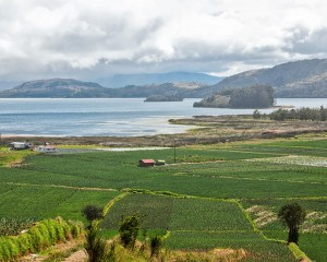 4,2 millones de euros dona la Unión Europea para recuperar la Laguna de Tota