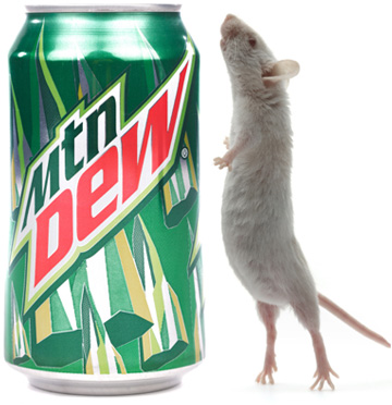 Mountain Dew Lemonerd