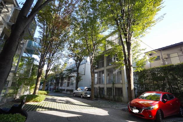 refugeo`forest-N307-facade-02-sohotokyo