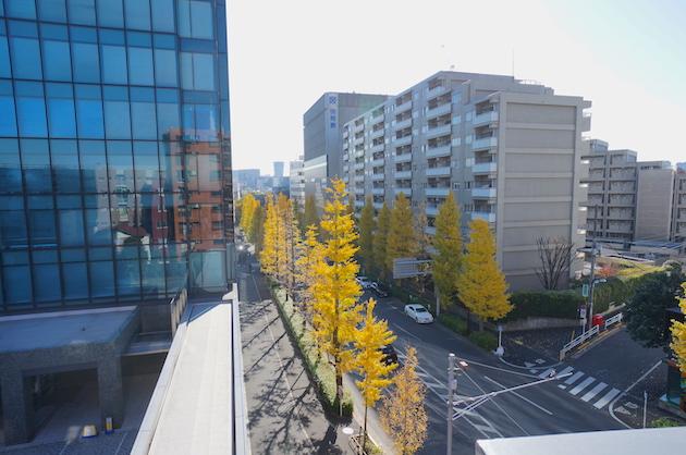 shirley_harajuku-503-sight-04-sohotokyo