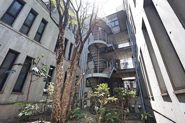【募集終了】渋谷。樹々の成長と共に勤しむオフィス