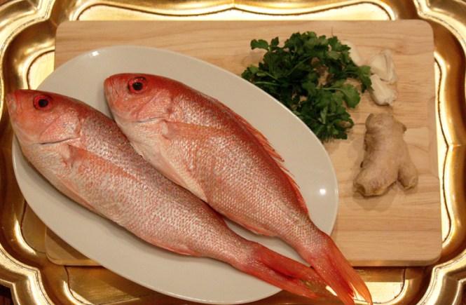 Crvena riba