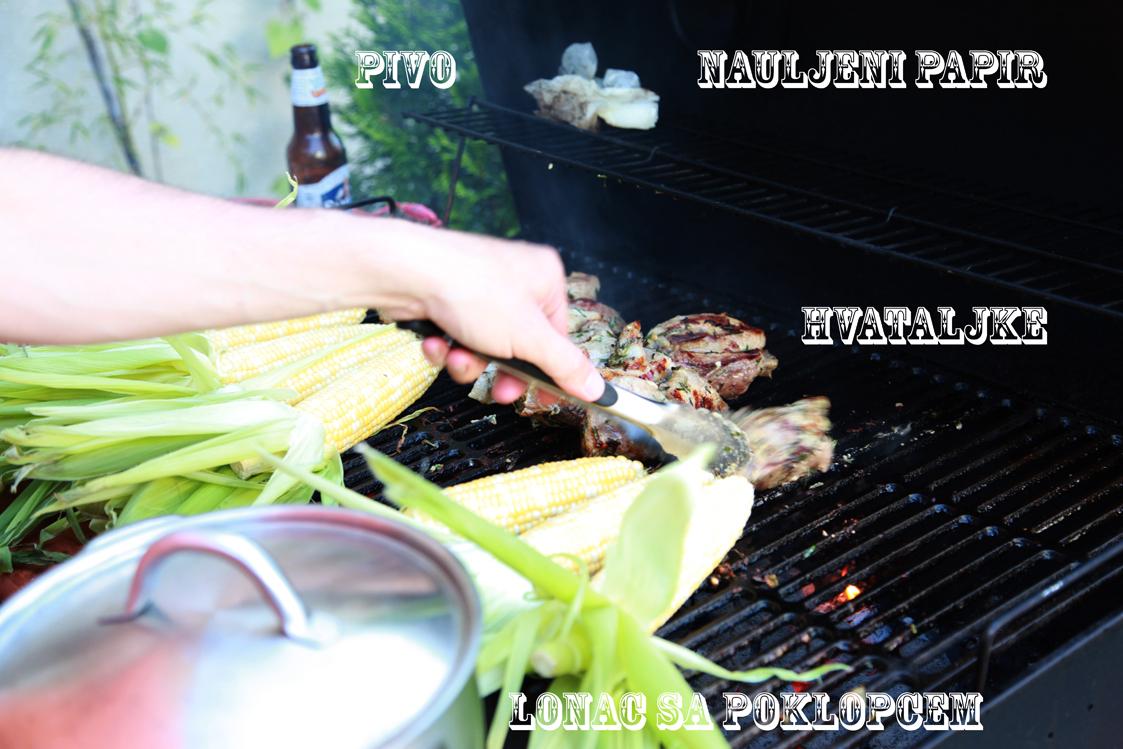 Oda roštiljanju, plus ideje i saveti za dobar roštilj