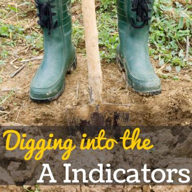 A Indicators