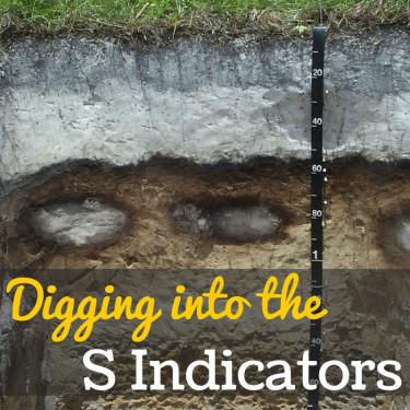 S Indicators
