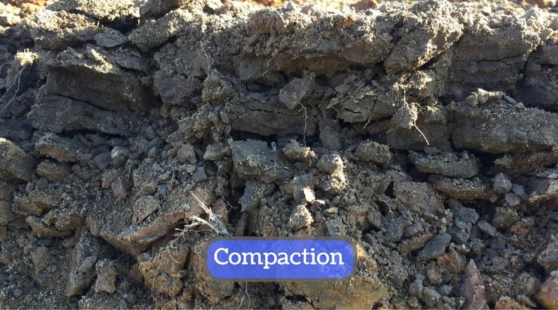 surface-soil-compaction