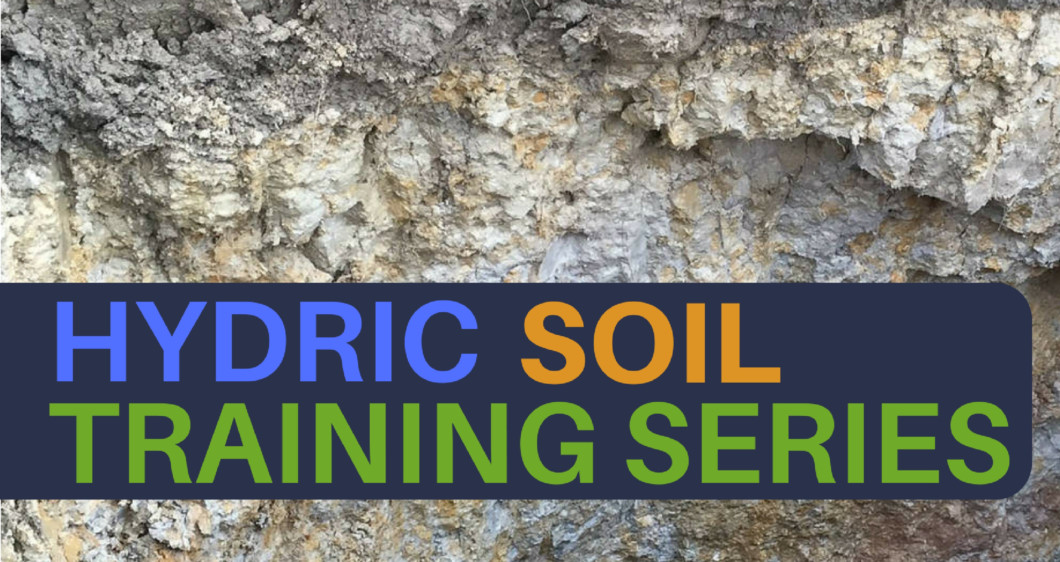 Hydric Soil Training Series Banner