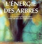 L'énergie des arbres - Soins énergétiques Alsace