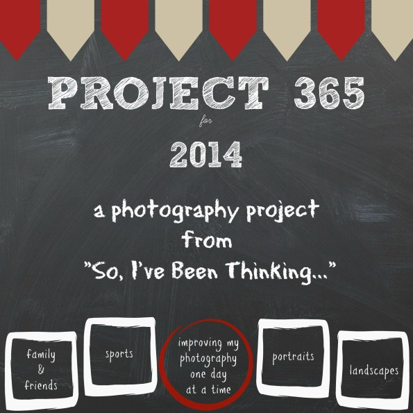 Project 365 for 2014