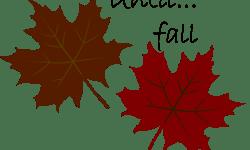 until fall soivebeenthinking.com
