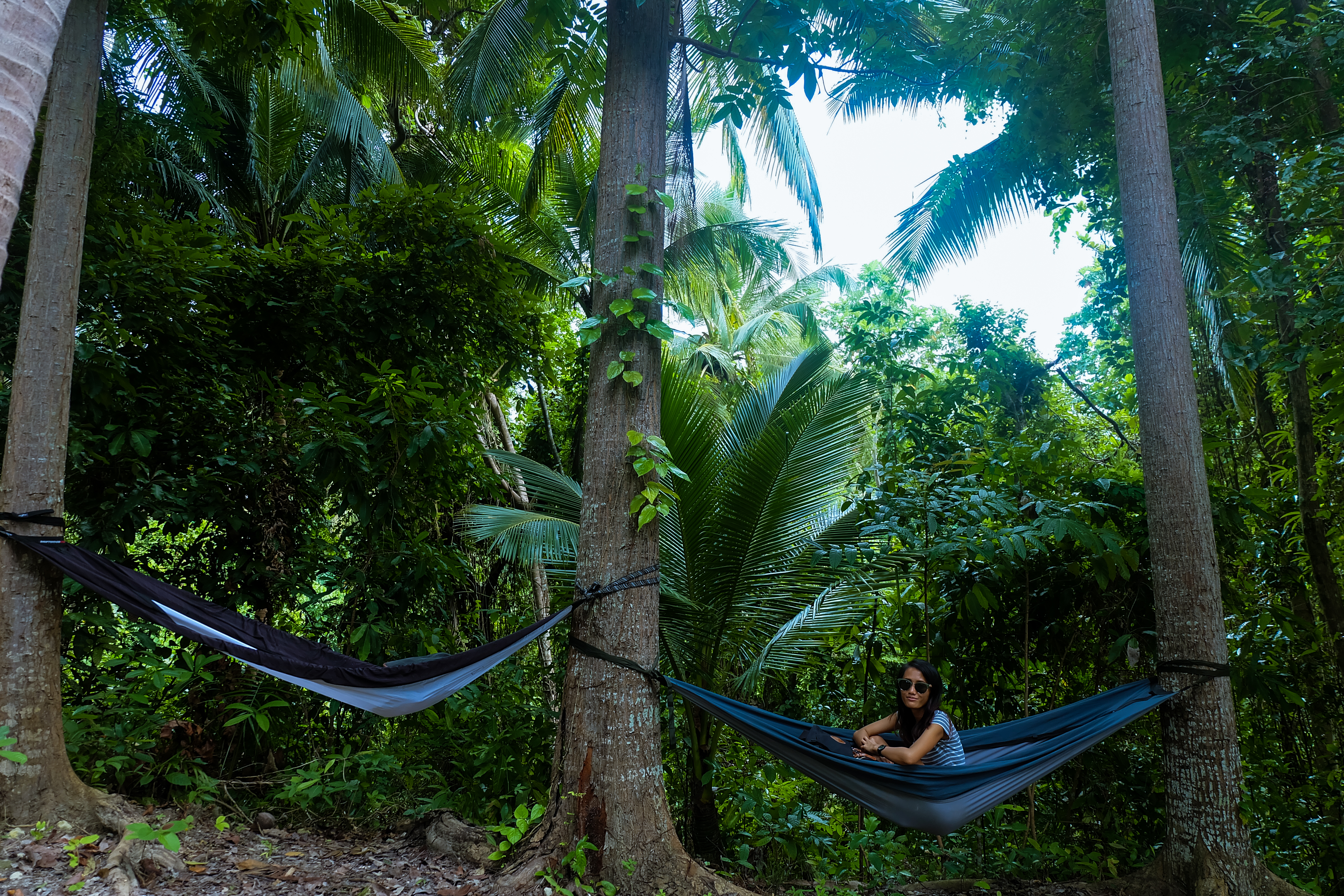 Hammocks And Happiness At Bacalla Woods Sojourns And Stories