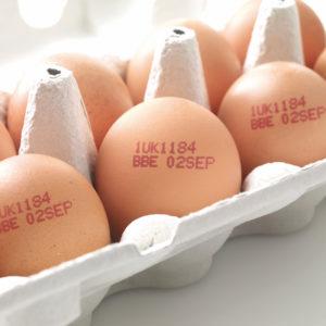 Impresión de huevos