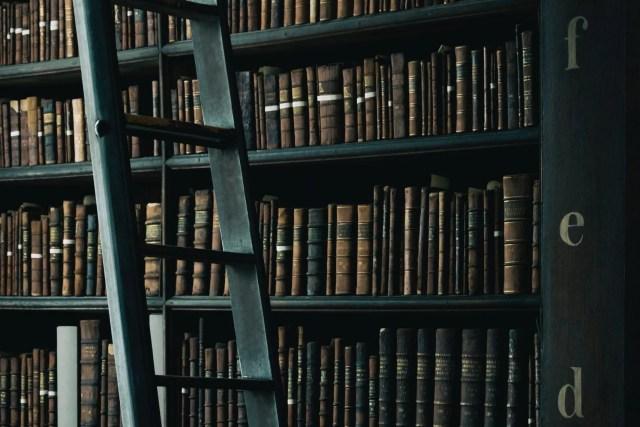 Comment fonctionne le livre des Proverbes ?  (partie 2)