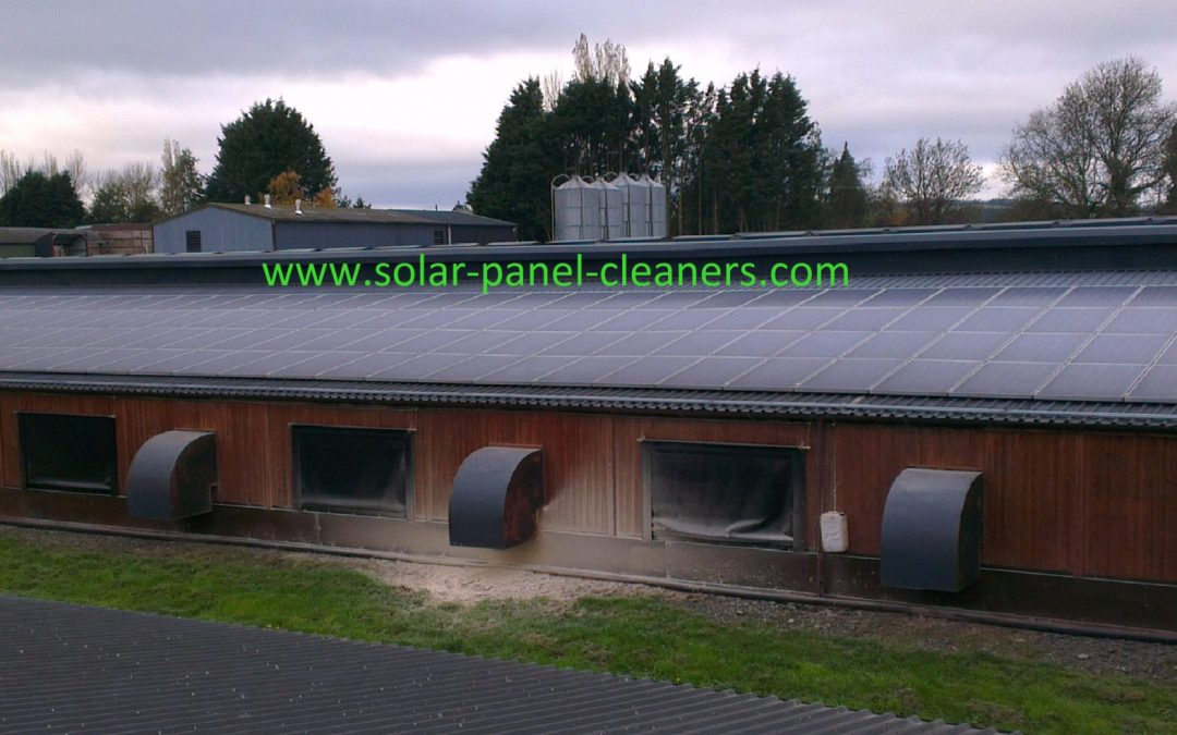 Solar Panel Cleaning Completed On Herefordshire Poultry Farm For Green Switch Solutions