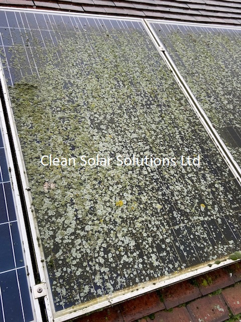 Solar panels that need cleaning Wembley