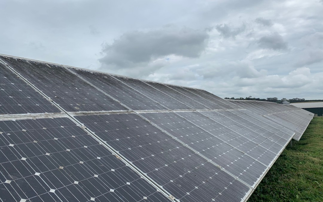Solar Panel Cleaning & Grass Cutting Wadebridge Solar Farm