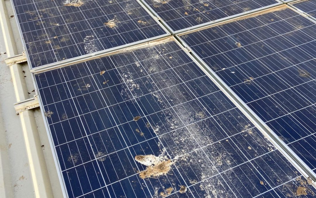 Solar Panel Cleaning in Doncaster – These Panels Are Simply Ditched!