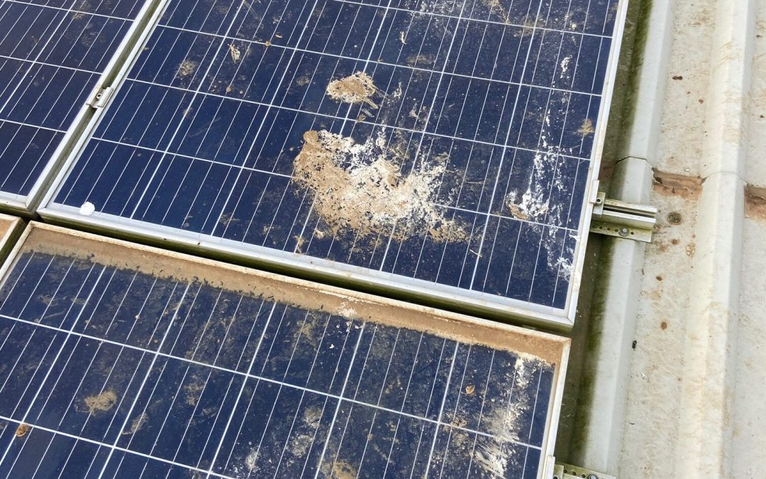 Cleaning Solar Panels In Doncaster That Are Simply Ditched!