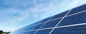solar panels in a farmers field