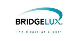 Bridgelux-300x158 LED Flood Light