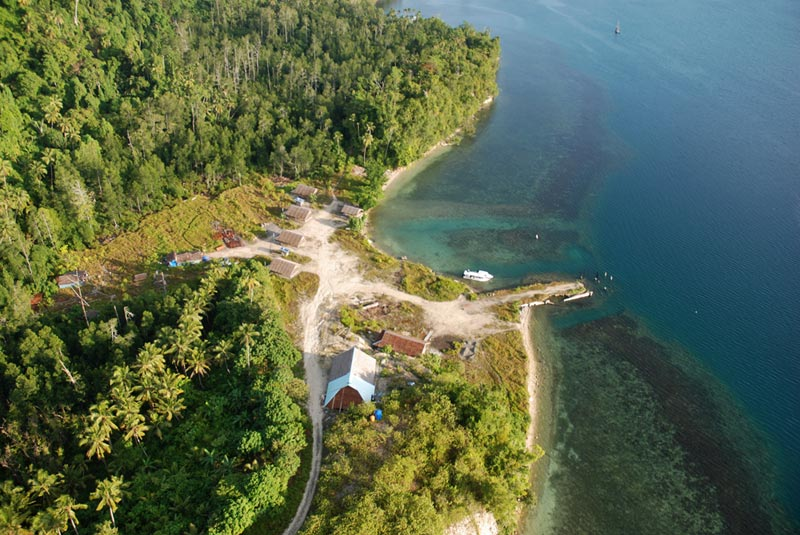 11-the-projects_weda-reef-and-rain-forest-resort-1