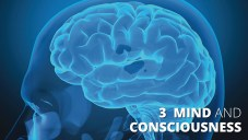 Mind and Consciousness.001