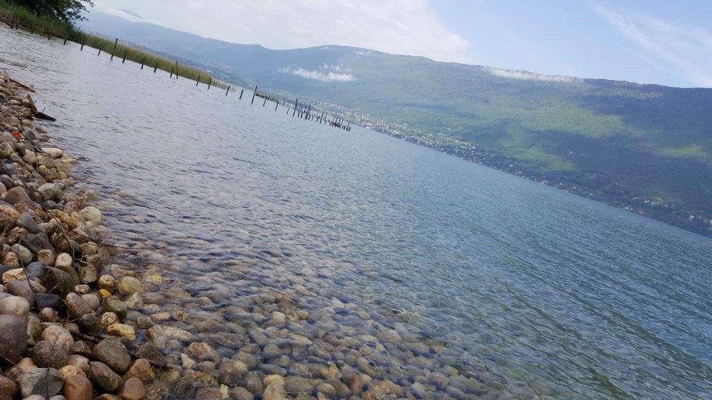 Activités Lac du Bourget