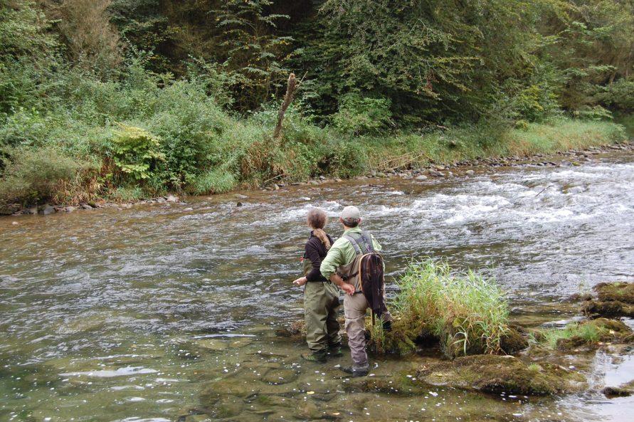 Pêcher au toc Oloron sainte Marie
