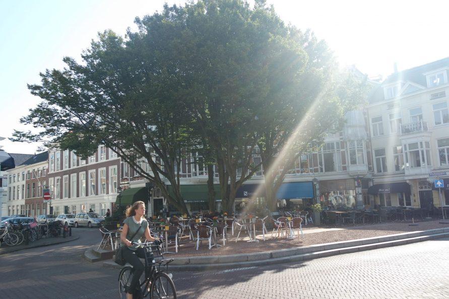 Séjour sportif à La Haye vélo