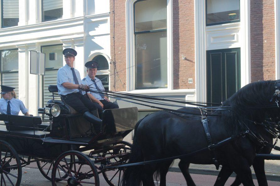 Séjour sportif à la Haye calèche