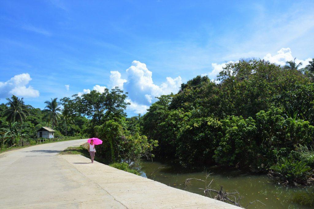 Sur la route Palawan