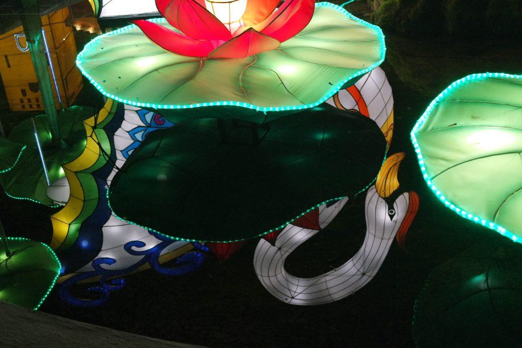 Festival des lumières de Gaillac
