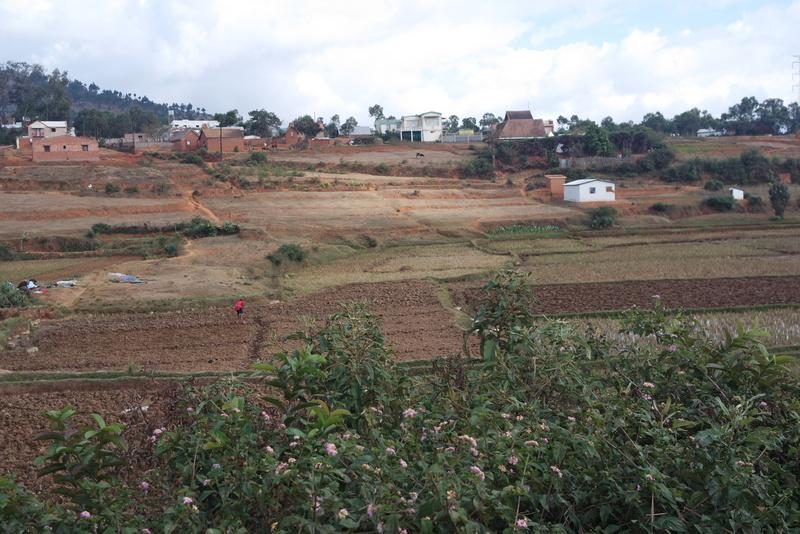 Campagne Madagascar