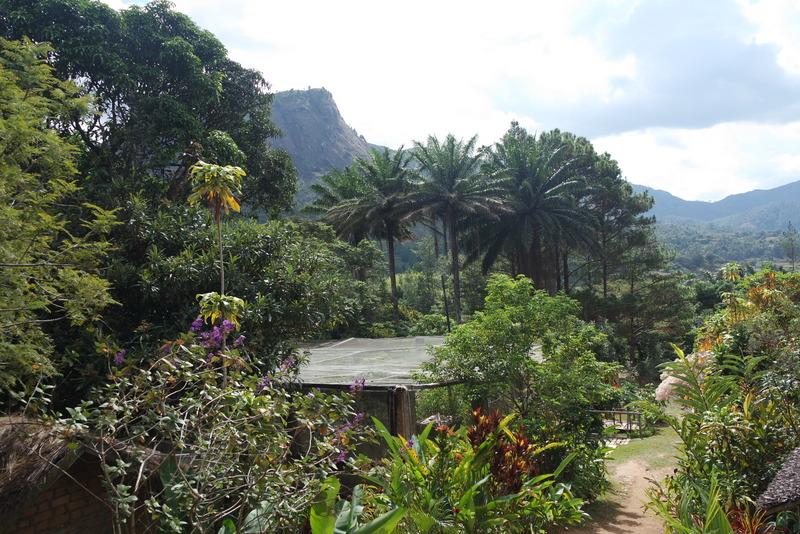 Ferme reptiles Madagascar