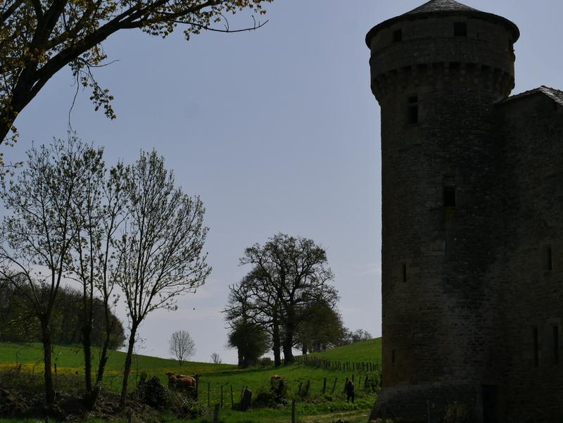 Domaine des Bourines
