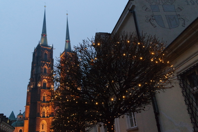 Cathédrale Saint Jean-Baptiste Wroclaw