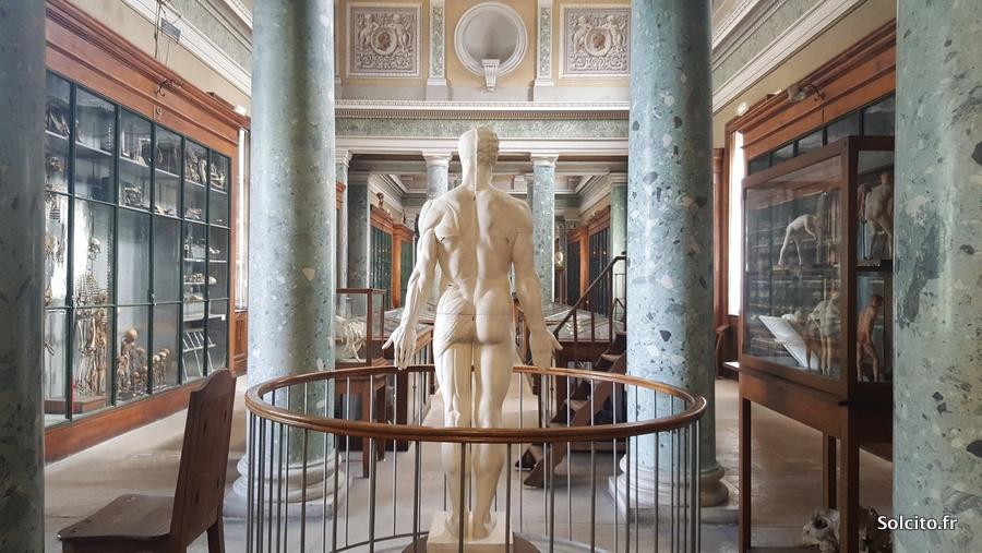 Galerie des horreurs Montpellier