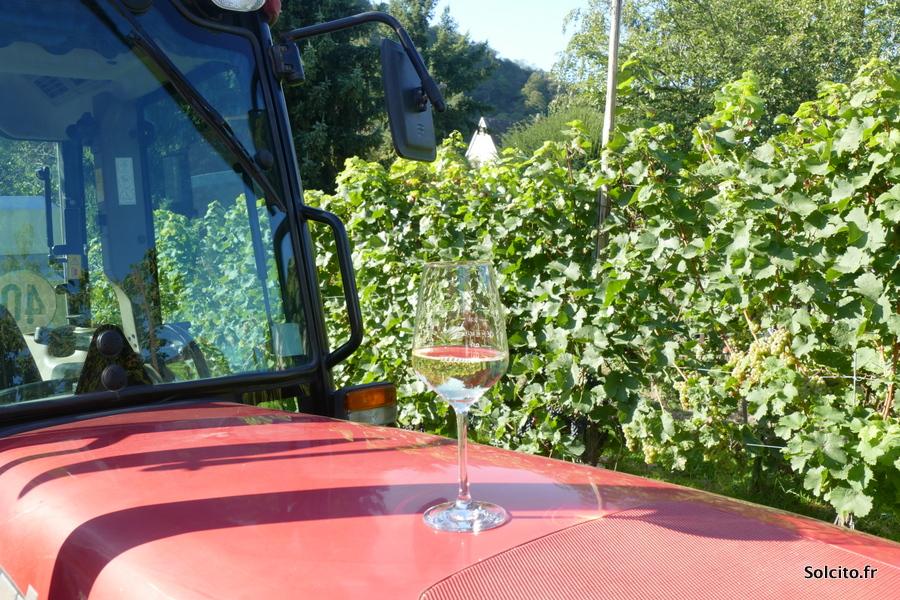 Vins Traben-Trarbach Rhénanie-Palatinat