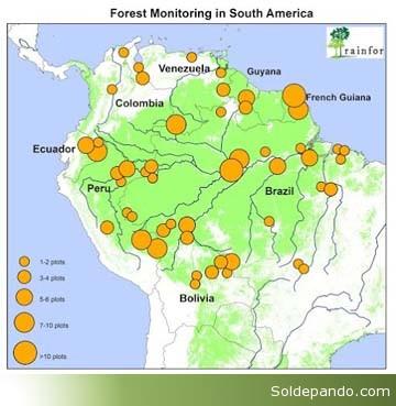 Monitoreo Amazonia