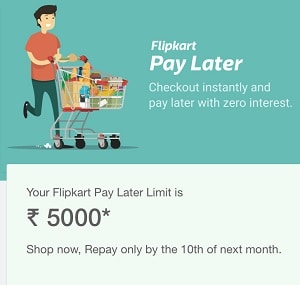 pay later app india