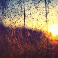 Radiant Emptiness