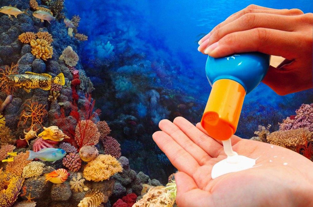 Creme solari pericolose per i coralli