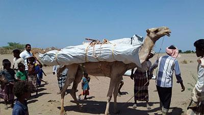 abris yemen urgence