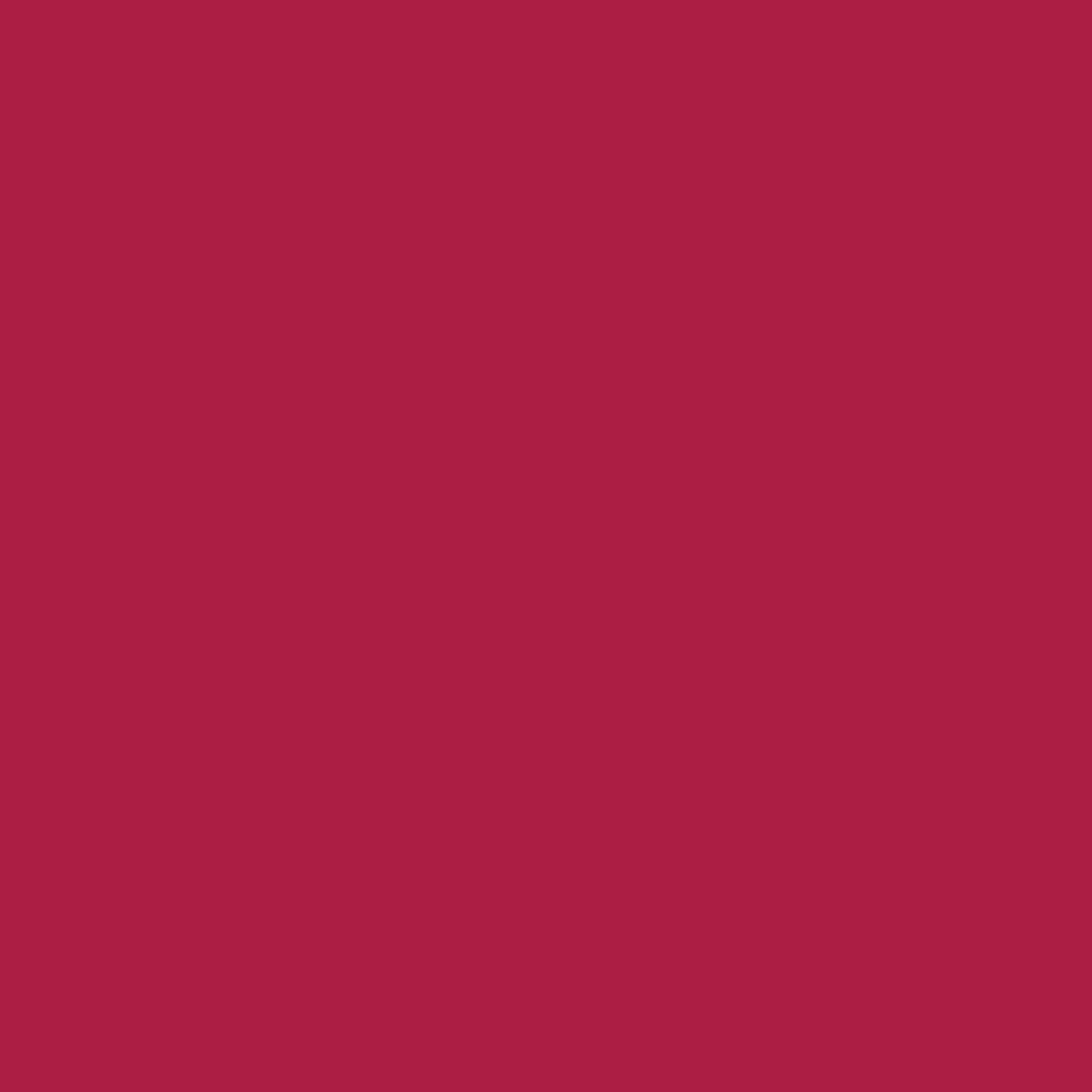 2048x2048 French Wine Solid Color Background